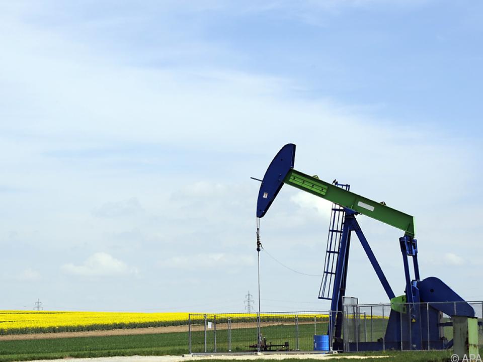 Prognose für 2019 auf 32,05 Mio. Barrel pro Tag gesenkt