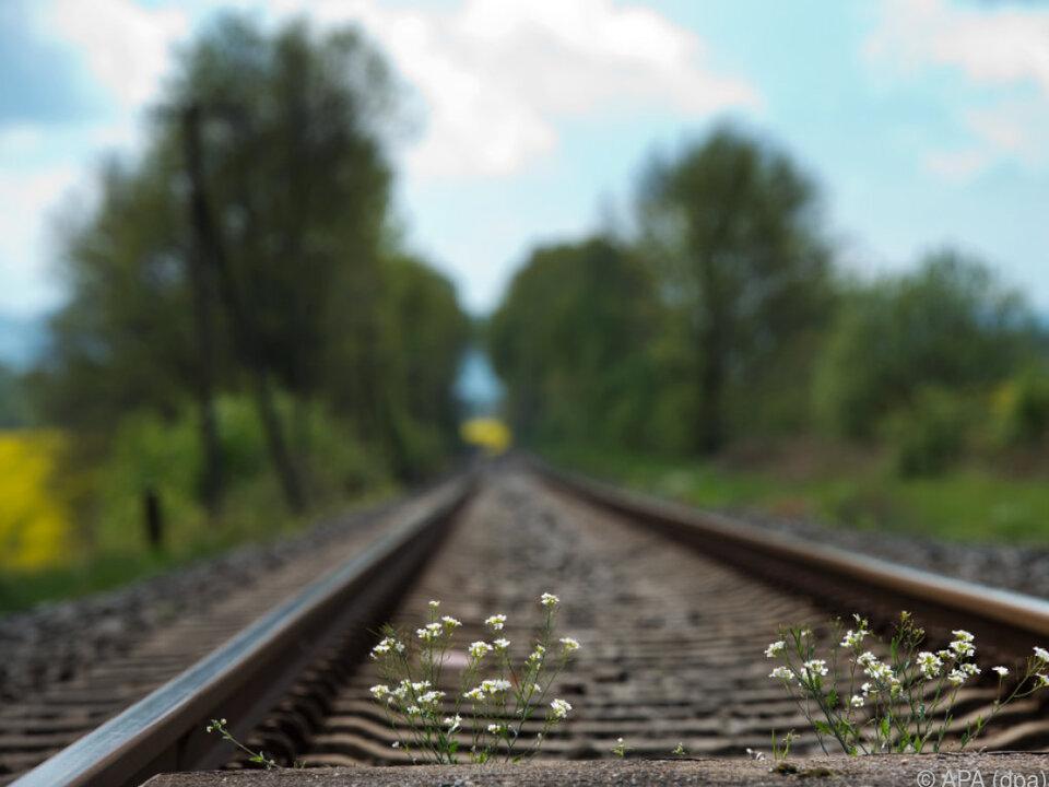 VCÖ: Mehr Regionalzüge könnten Mobilitätskosten reduzieren zug gleis bahn sym