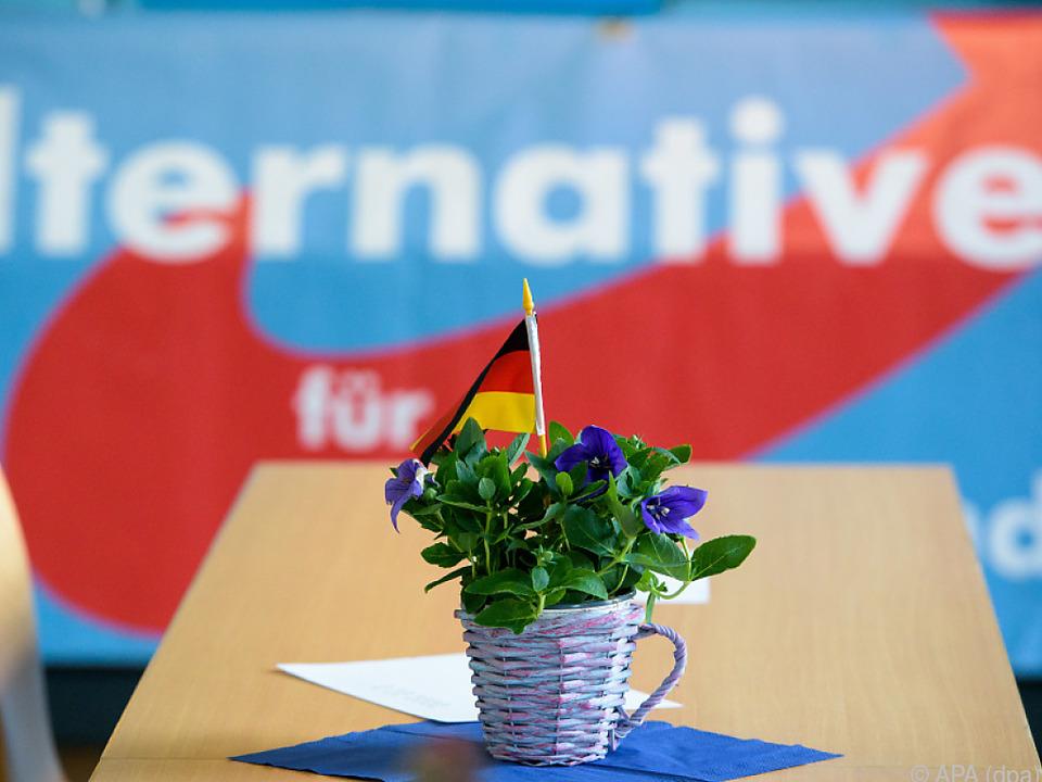 18 Prozent der Deutschen würden die AfD wählen