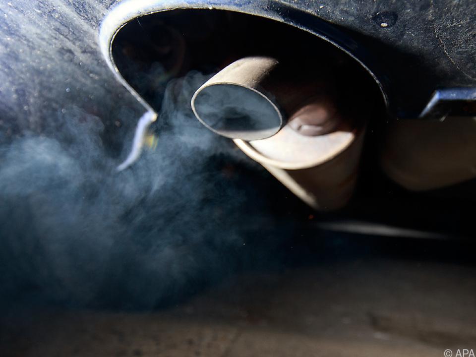 Die Autoabgase setzen der Umwelt schwer zu