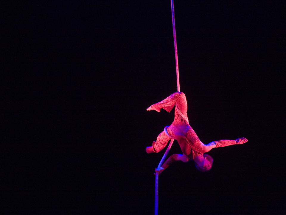 Zirkus, Artistin, Zirkusartistin