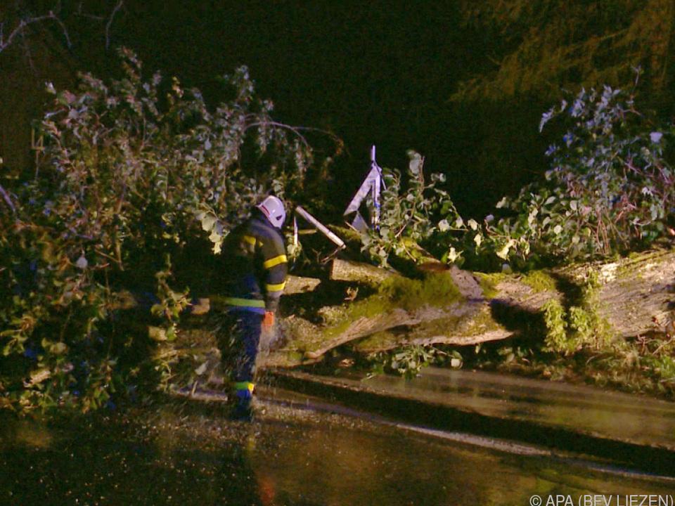 Umgestürzte Bäume machten Probleme