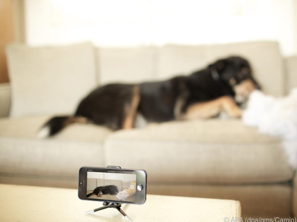Das ausrangierte Smartphone kann als Überwachungskamera Dienste leisten