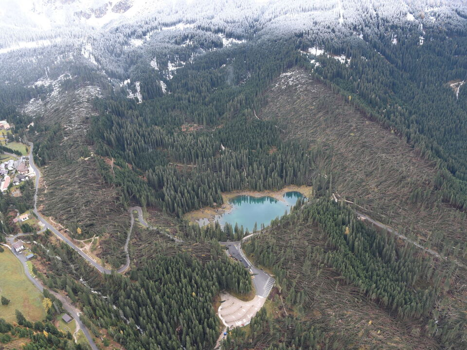 karersee 1013907_Latemarwald sturm