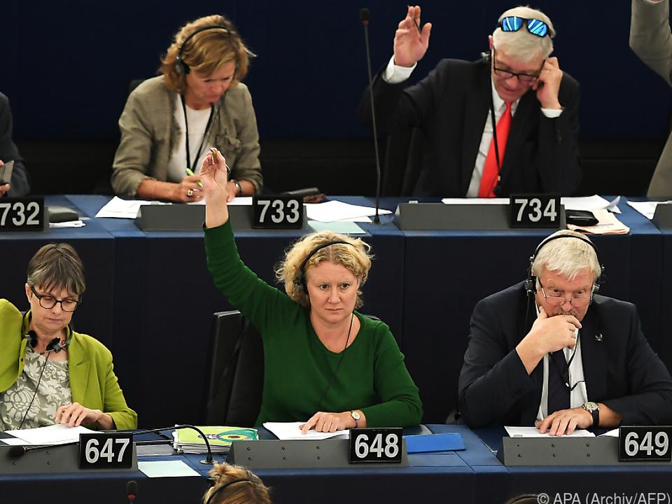 Angenommener Bericht der Grünen-Abgeordneten Sargentini