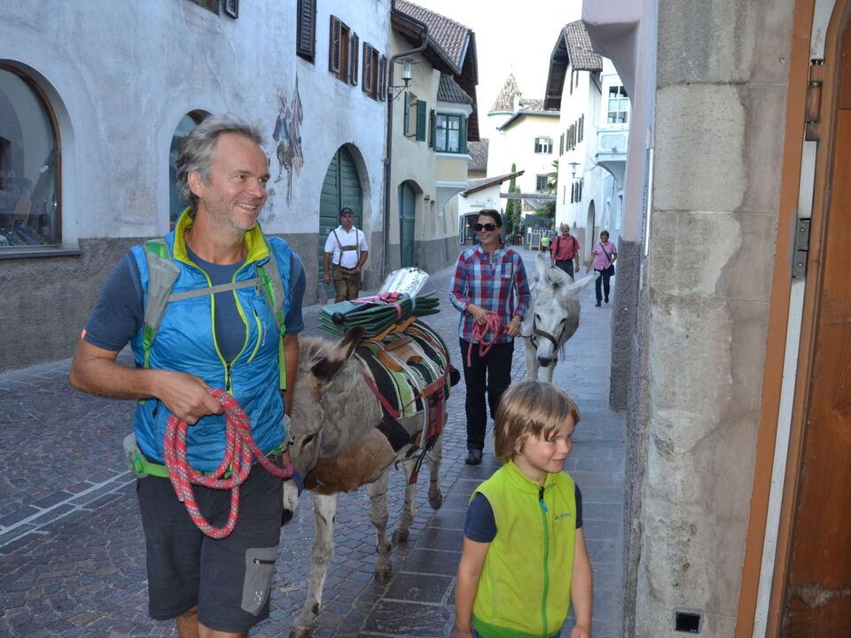 Familie Reise Esel