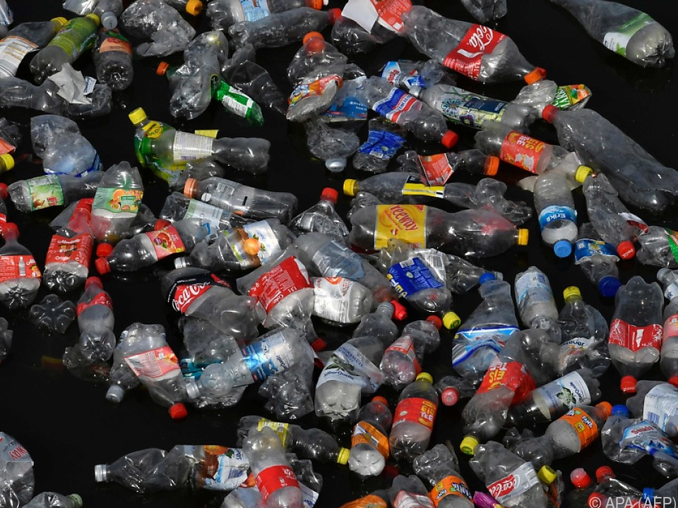 Plastikflaschen sind eine wahre Umweltsünde