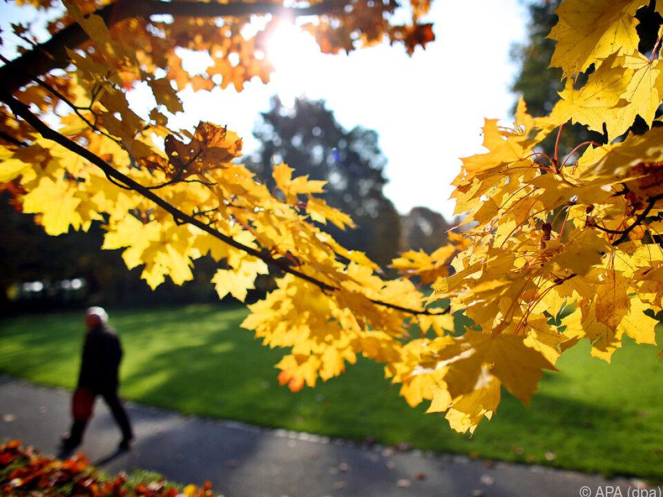 Schöne Herbsttage stehen bevor