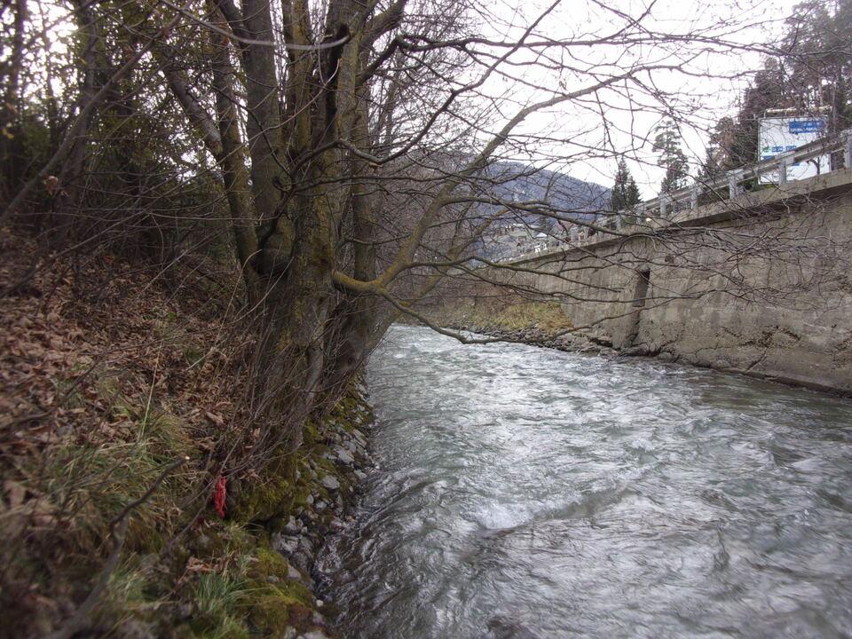 Uferpflege Eisack Sterzing