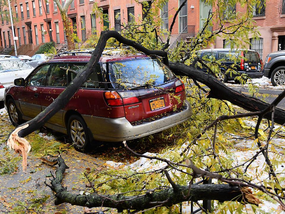 Abgebrochene Äste fielen in Brooklyn auf Autos