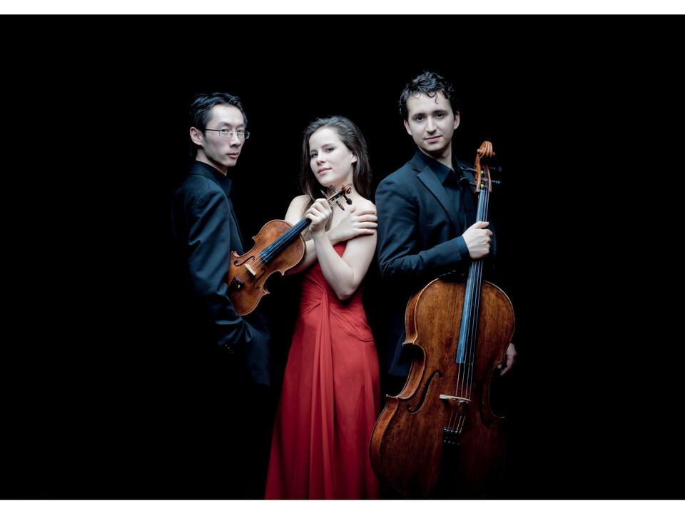 Amatis Trio-1