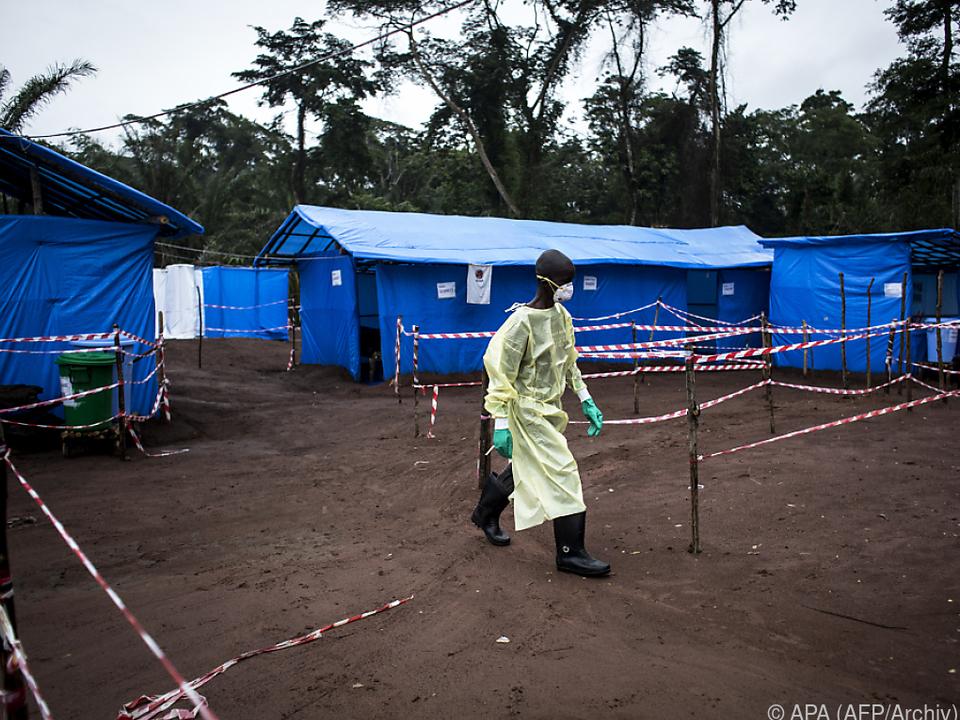 Das Ebola-Virus gehört zu den gefährlichsten Krankheitserregern
