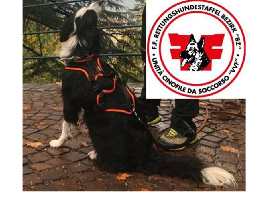 Facebook-Landesfeuerwehrverband Südtirol-Ronny