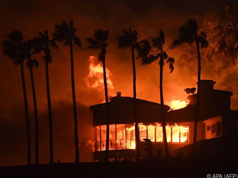 Tausende Gebäude wurden vernichtet