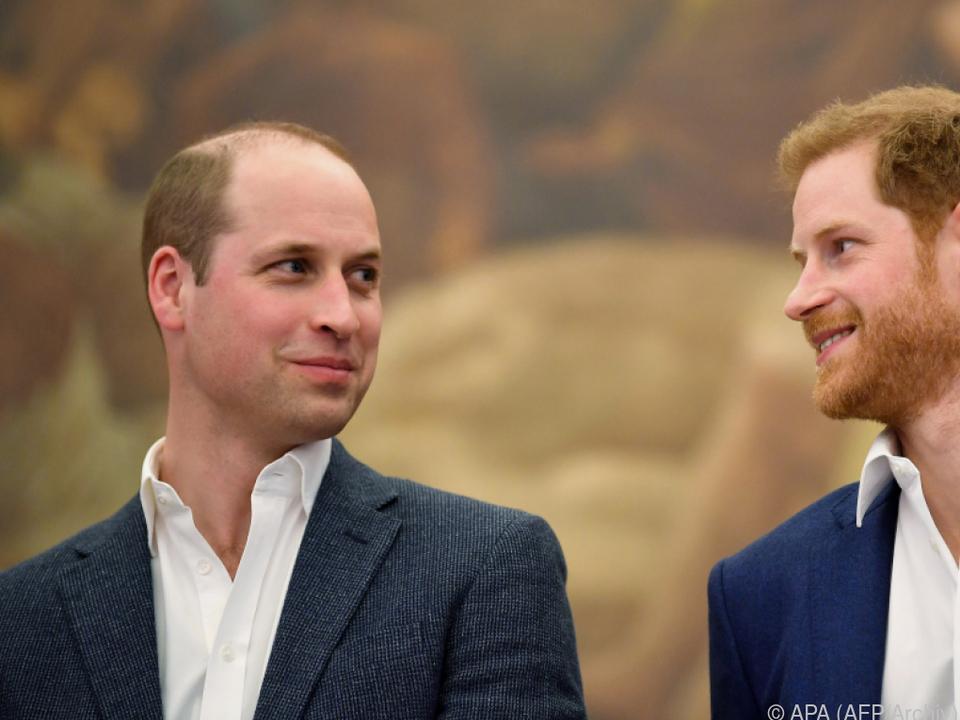 William und Harry sammelten in den Schulferien Müll auf