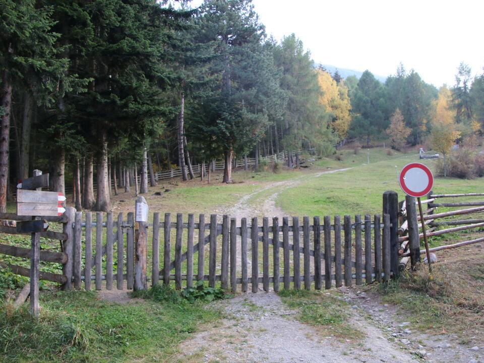 Durchgang der heutigen Forststraße auf die Schweinböden_Prad