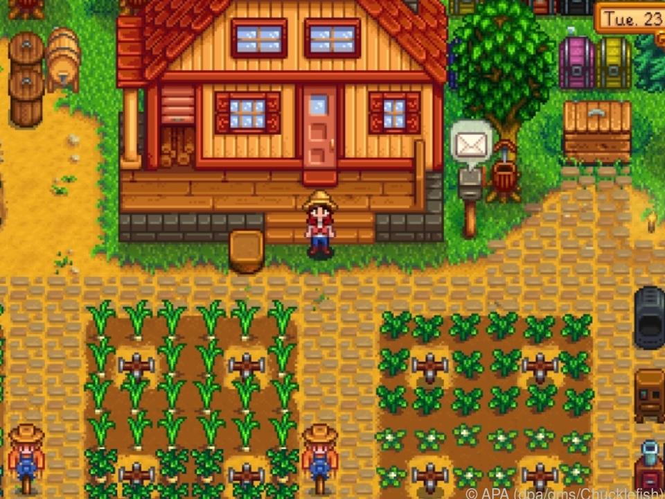 Einen alten Bauernhof auf Vordermann bringen: Darum geht es in \