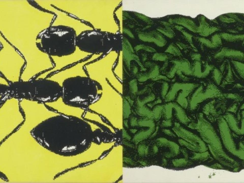 phoca_thumb_l_Kogler Peter_oT_1996_Galerie Rhomberg (1)