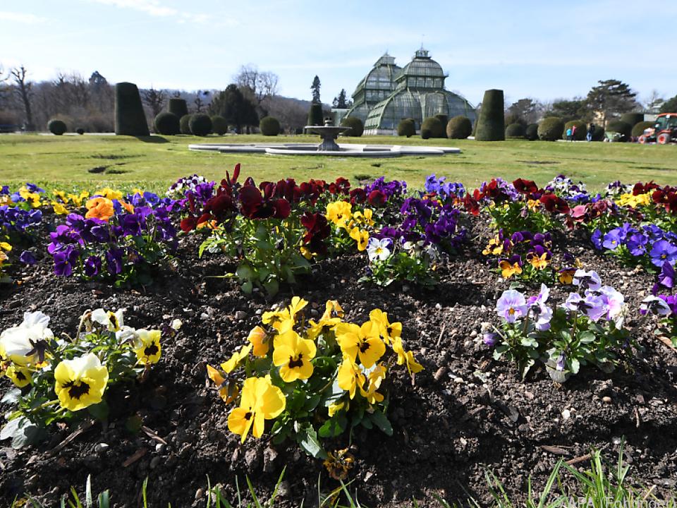 Der Schlosspark Schönbrunn ist einer der historischen Gärten