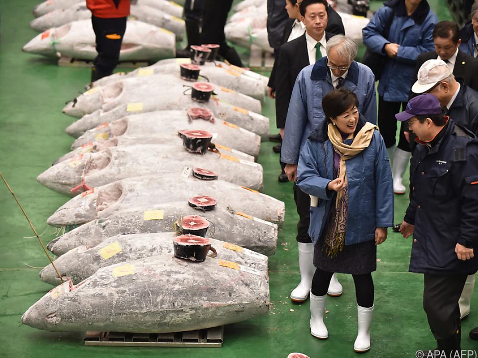 Kimura ersteigerte den teuersten Thunfisch auf der Neujahrs-Auktion