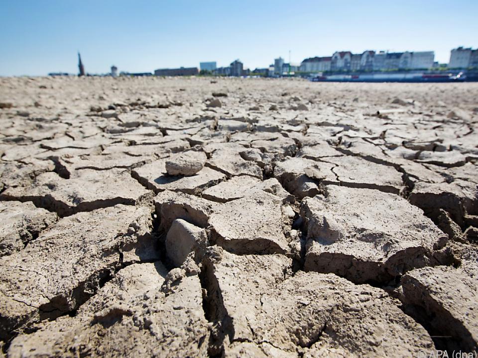 Umwelt-Situation ist eines der größten Alarmsignale