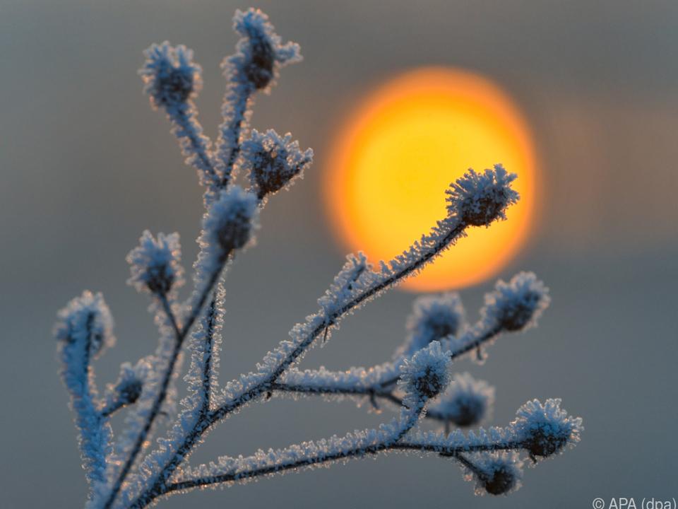 Vorerst muss weiter mit Kälte und Schnee vorlieb genommen werden