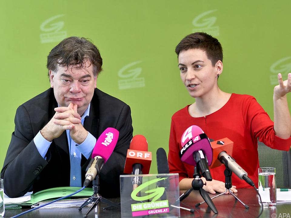 Bundessprecher Kogler mit der grünen EU-Spitzenkandidatin Keller