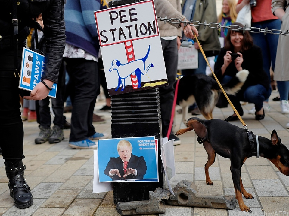 Hunde-Pissoir mit Fotos von Boris Johnson