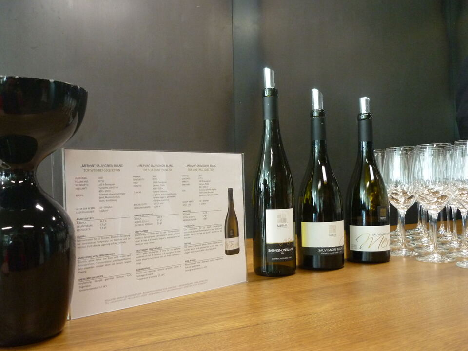 Meraner Weinbautagung_Sauvignon Blanc Verkostung 2019