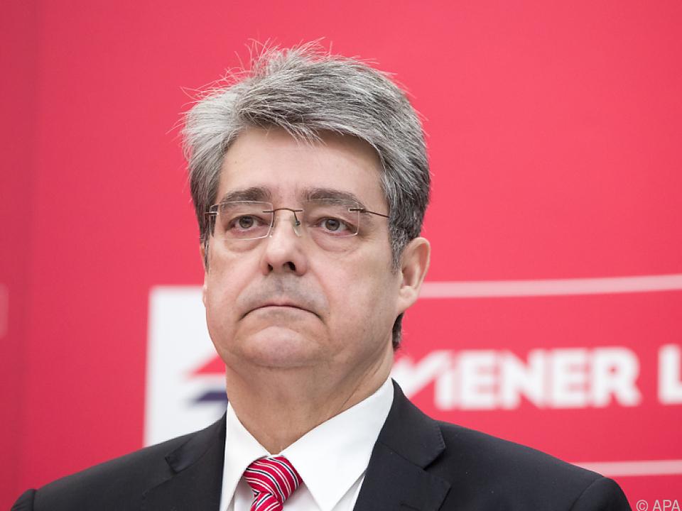 Siemens-Österreich-Chef Wolfgang Hesoun ist einer der Experten