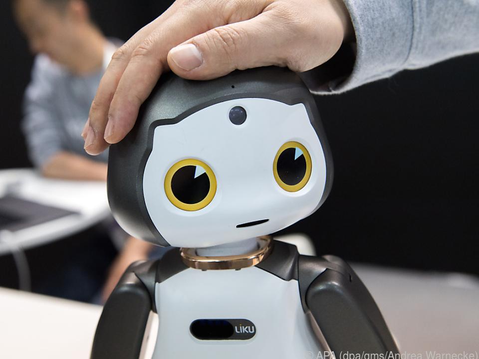 Streicheln erwünscht: Der Kopf von Roboter Liku ist touch-sensitiv