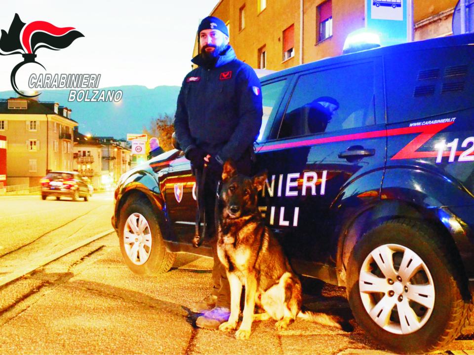 Carabinieri Hundestaffel Straßenkontrolle Drogen Spürhund 20190305_-_UNITA\'_CINOFILA_AI_POSTI_DI_CONTROLLO