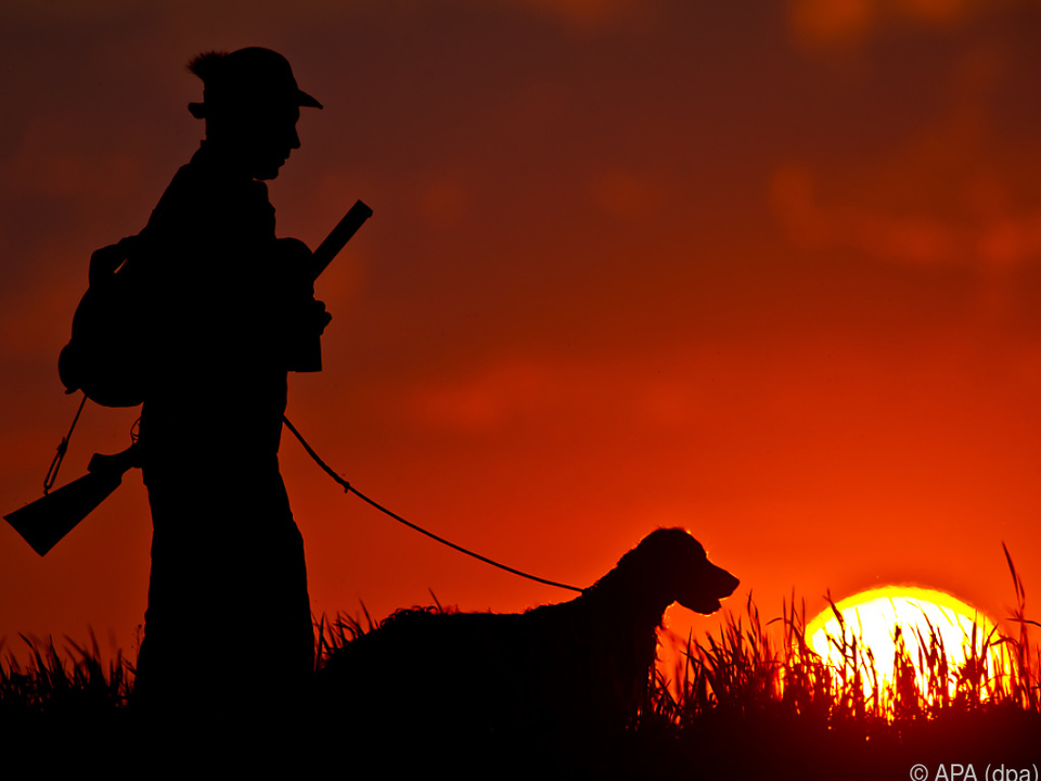 Der Jäger hat den Hund im Garten erschossen sym jagd