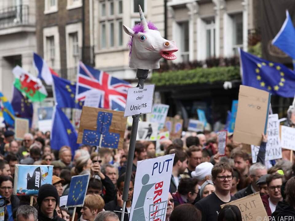 Einhörner, Fahnen und viele, viele Demonstranten