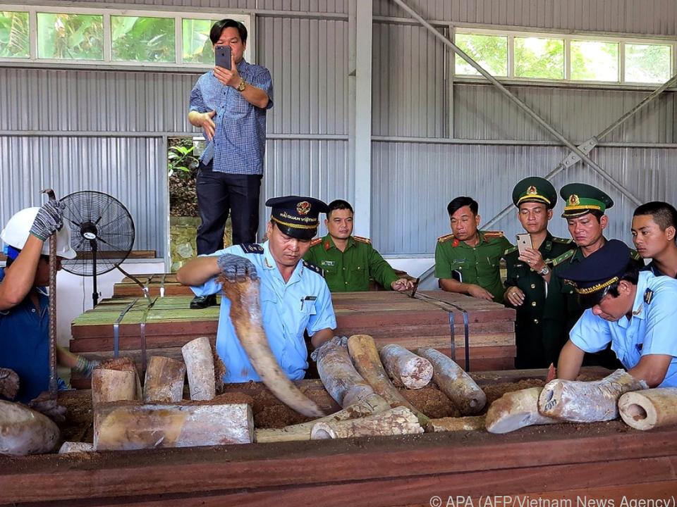 Elfenbein wird zur Herstellung traditioneller Arzneien verwendet