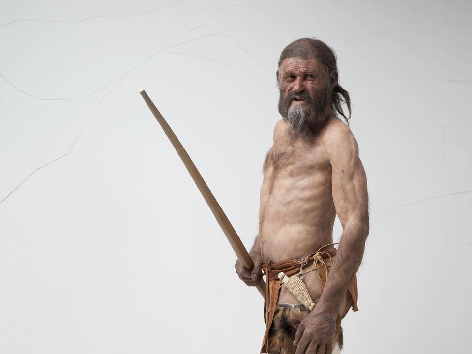 Ötzi Archäologiemuseum-Reconstruction_by_Kennis_Foto_Ochsenreiter_(body)