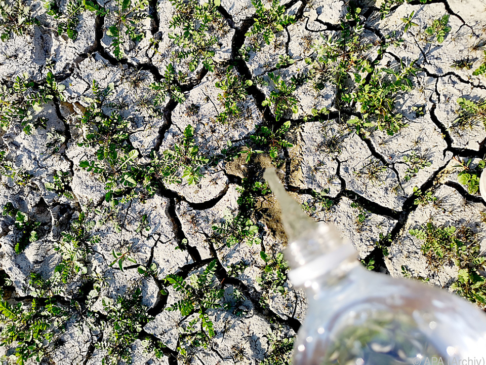 Das Jahr lag laut Europäischem Klimabericht 1,3 Grad über dem Schnitt