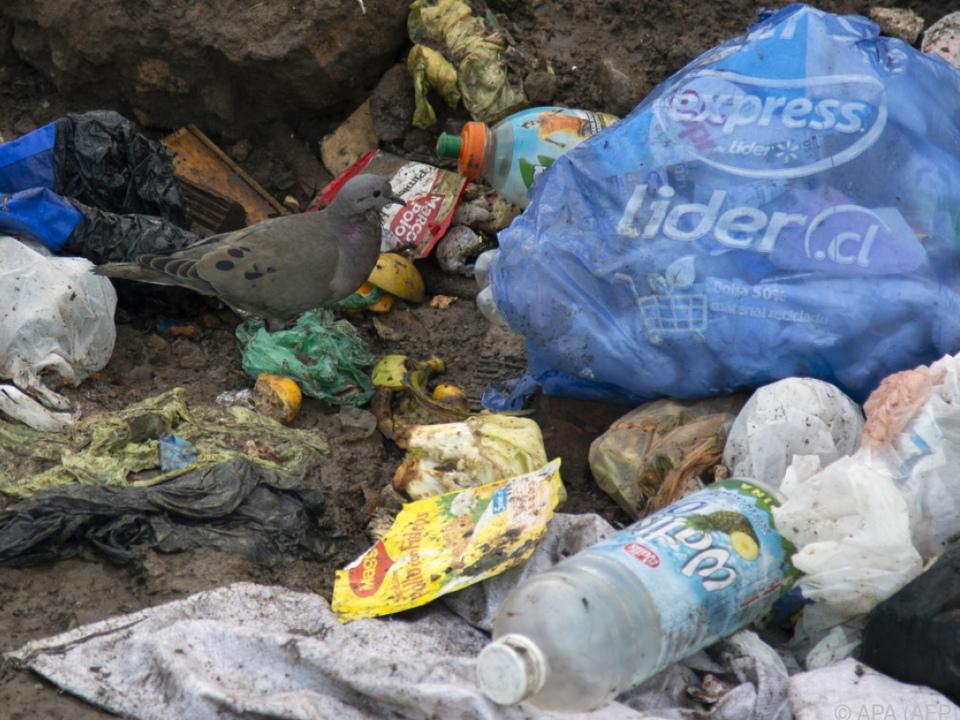 Plastikmüll im Meer soll bekämpft werden