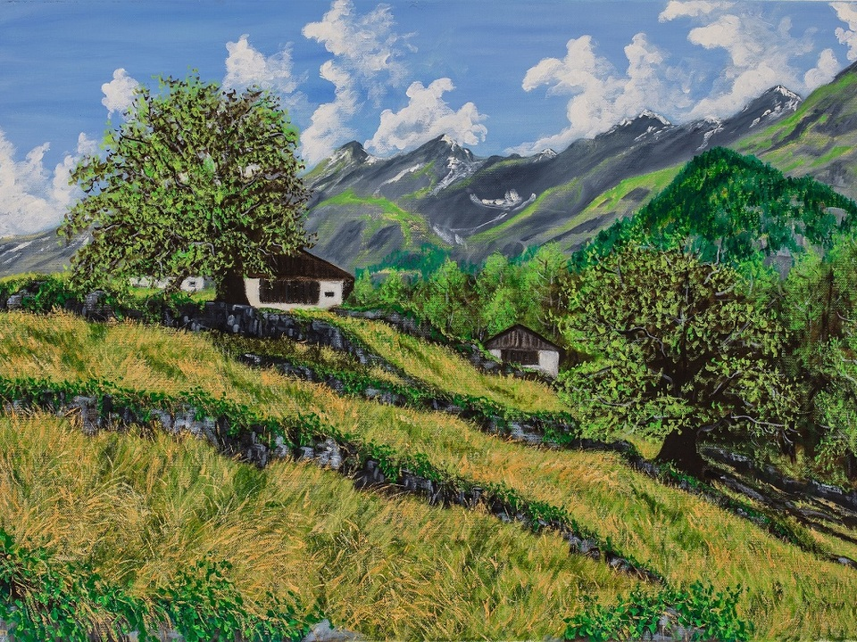 Foto 1_Dintorni di Naturno 50 x 70 cm olio su tela