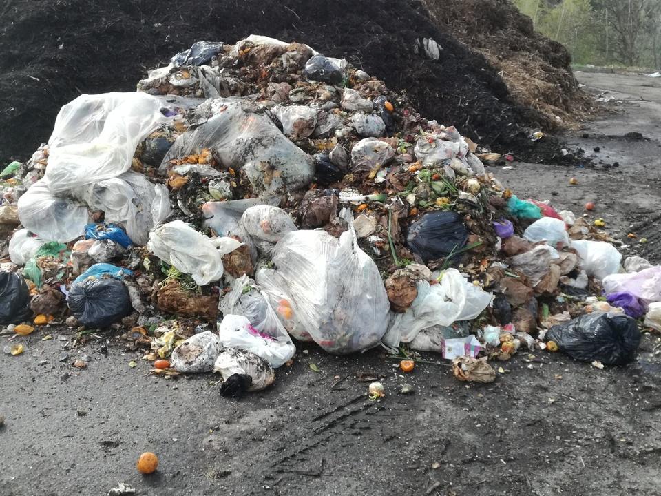 Verunreinigter Biomuell_rifiuti organici sporchi