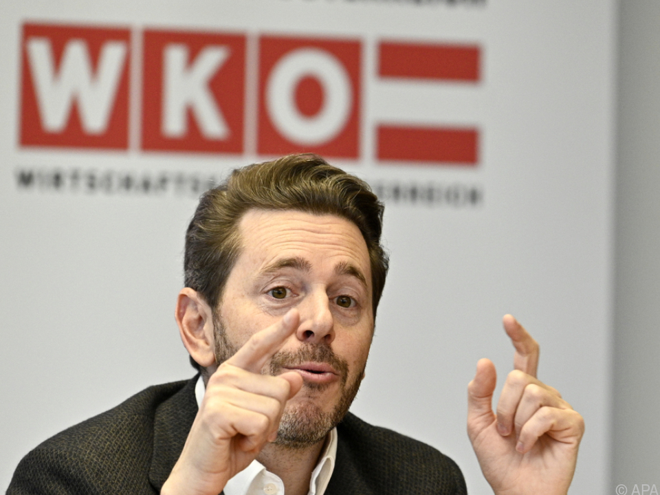 WKO-Präsident Harald Mahrer