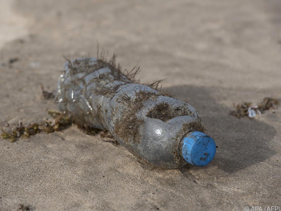Plastikmüll gehört an Stränden zum Alltag