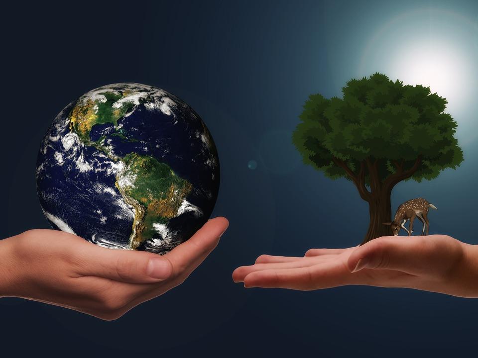 Klimaschutz Hände