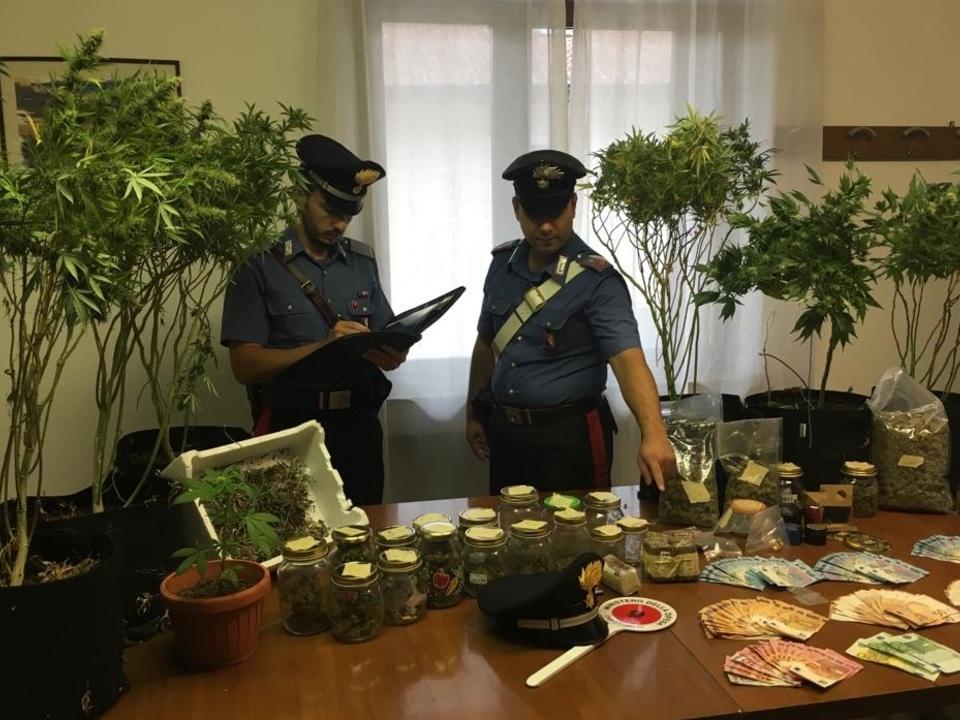 sequestro droga dei CC Laives -  NOTIZIARIO 07.09.2019