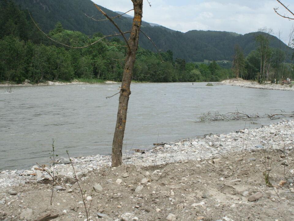Wald wurde für den Hochwasserschutz geofert