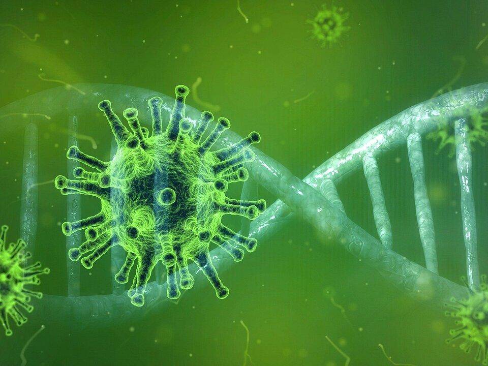 1057617_Coronavirus_pixabay