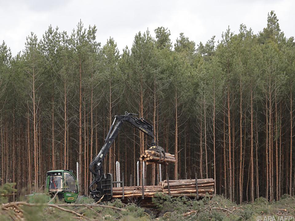 Eilanträge der Umweltschützer wurden abgewiesen