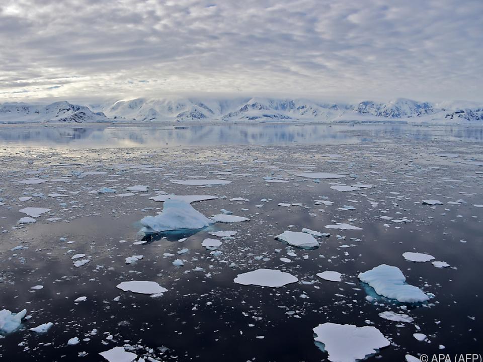 Eisschmelze in der Antarktis wohl mit massiven Auswirkungen