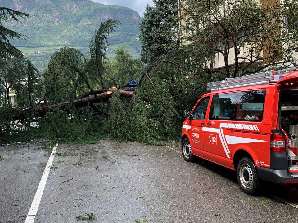 Foto 3 - Unwetterschäden nach Sturm