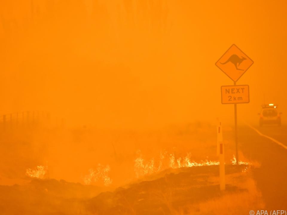 Verheerende Brände suchten Australien heim